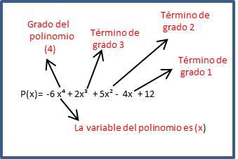 Grado del polinomio